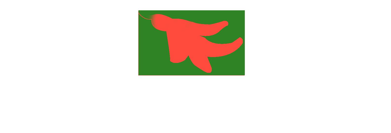 Cocina plancha